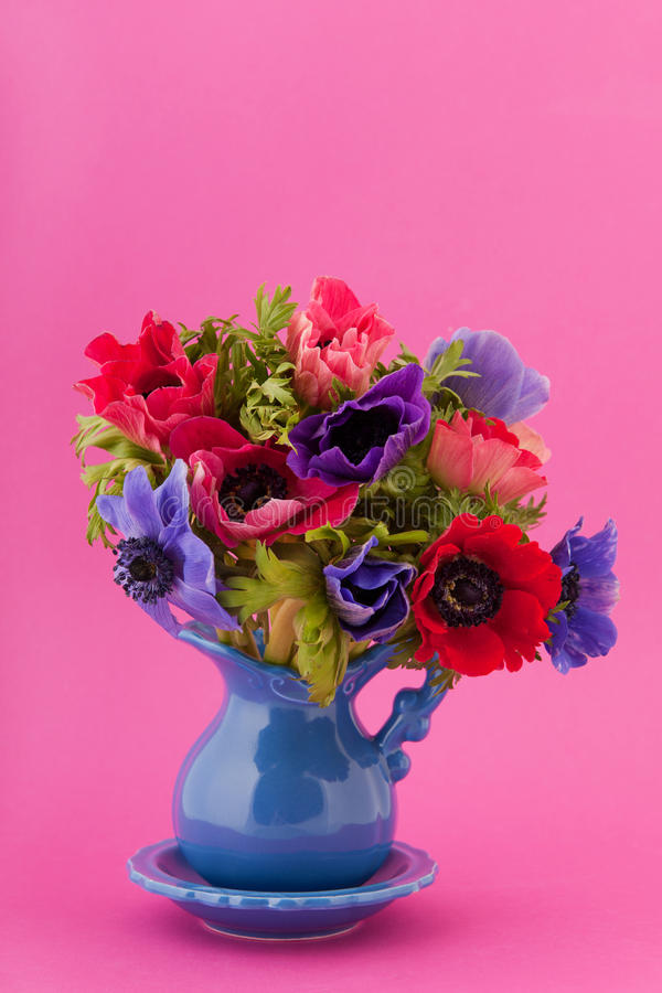 Download Colorful bouquet Anemones stock photo. Image of anemones - 22785124