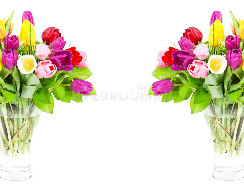 Colorful bouquet of fresh tulip flowers. Card concept stock photography