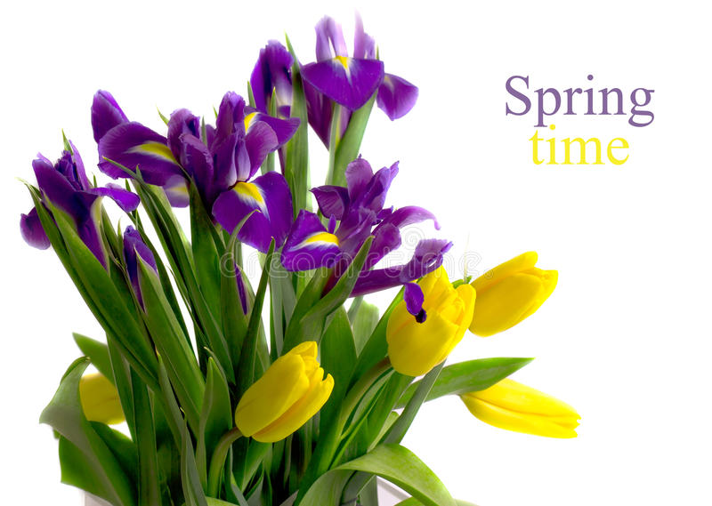 Colorful bouquet of spring flowers royalty free stock images