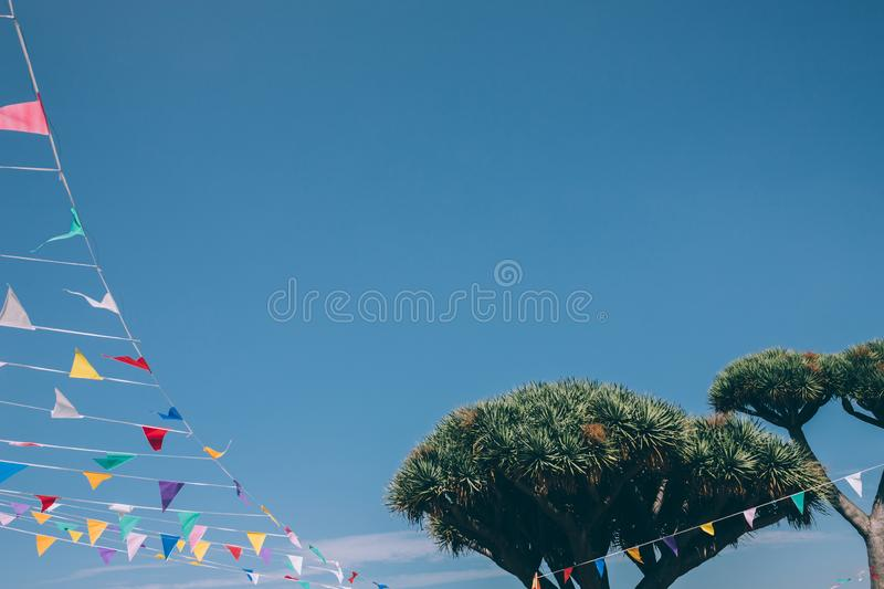 Colorful bunting flags tied to a Dragon Tree on blue sky on background, Spain royalty free stock photos