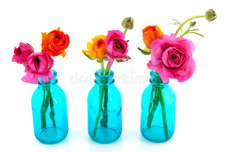 Colorful butter cups in blue vases stock image