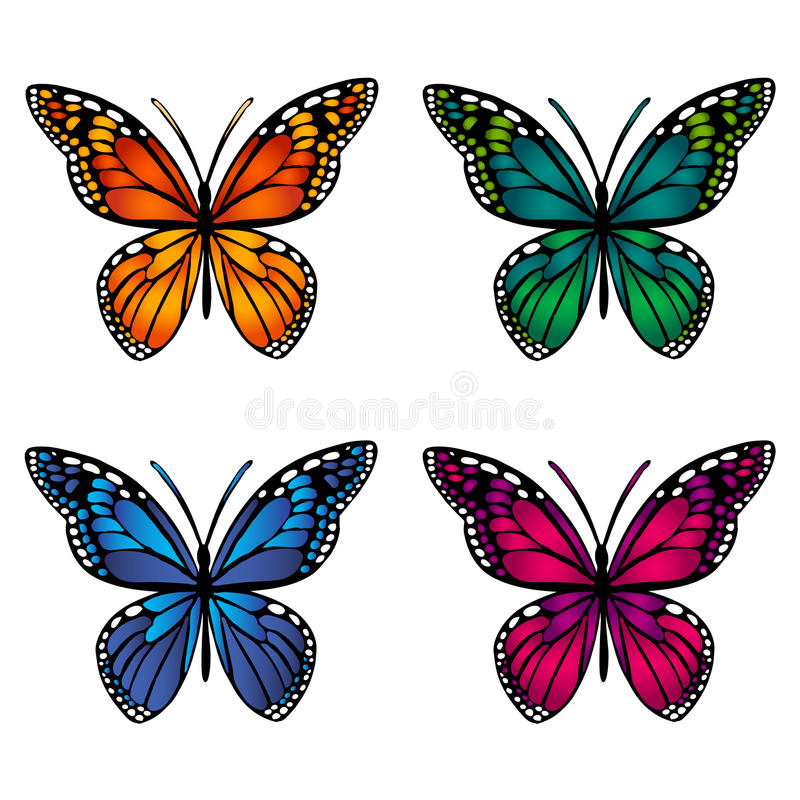 Colorful butterflies on white background. Vector illustration royalty free illustration
