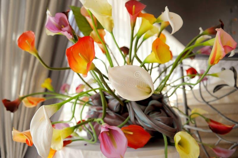 Download Colorful Callas stock image. Image of floral, image, arrangement - 30499623