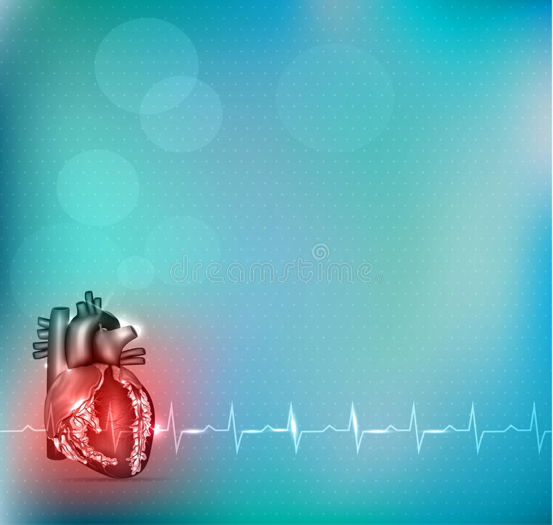 Colorful Cardiology background vector illustration