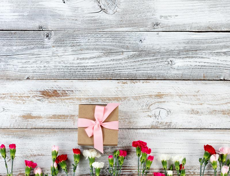 Colorful carnation flowers and gift forming bottom border on white weathered wooden boards stock images