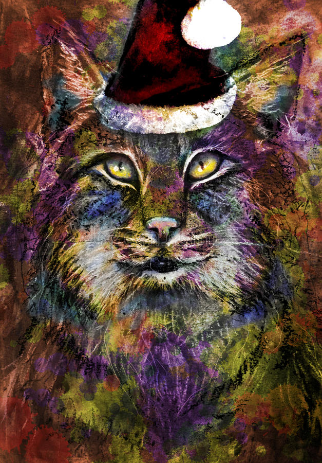 Colorful Cat with Christmas hat stock image