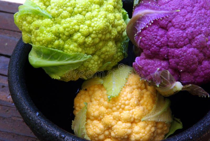 Colorful Cauliflower stock image