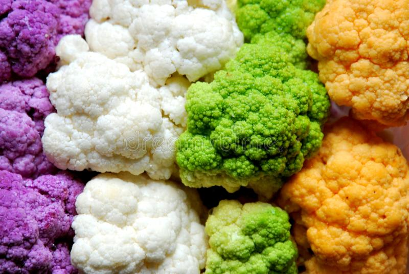 Colorful cauliflower and broccoli : purple, white, green, orange. Colorful cauliflower : purple, white, green, orange . vegan, vegetarian food as a background royalty free stock photography