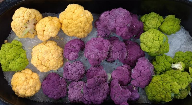 Colorful Cauliflower stock images