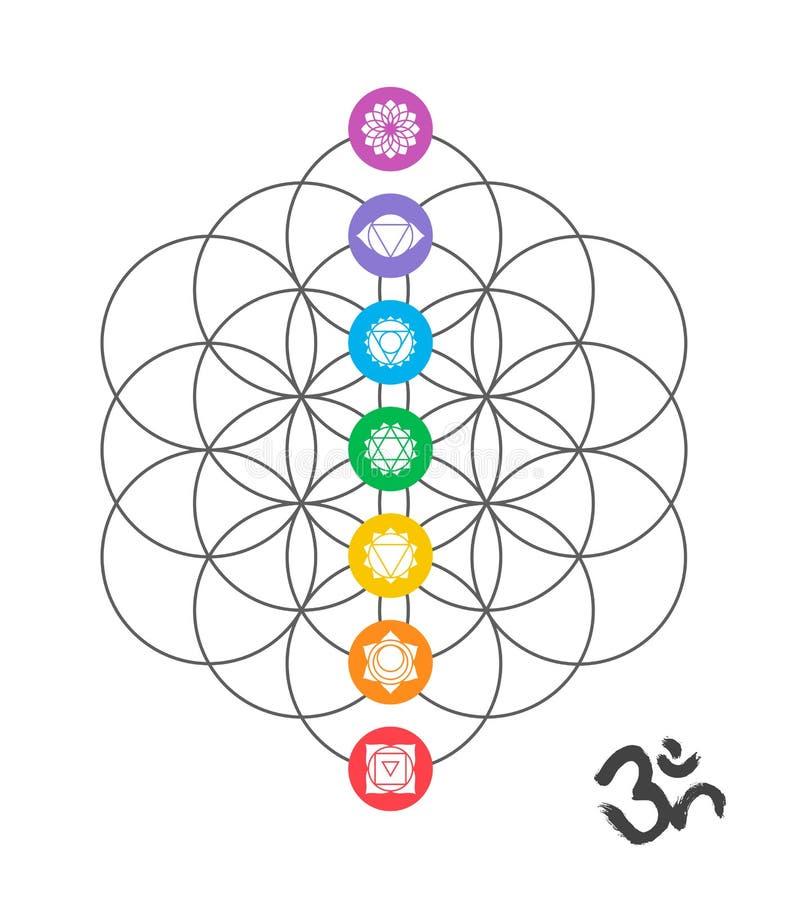 Colorful chakra icons on Sacred geometry design stock illustration