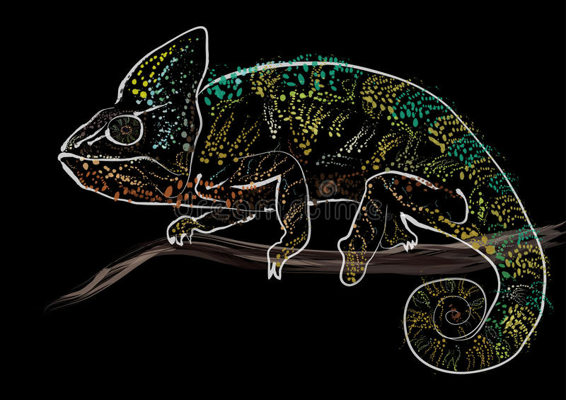 colorful chameleon royalty free stock photo