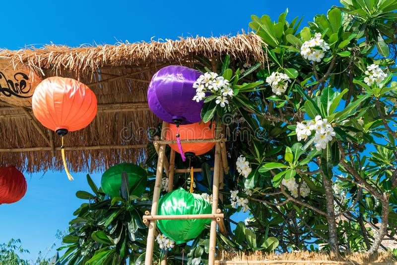Colorful Chinese lantern under a thatch roof with white flowers. Colorful Chinese lanterns under a thatch roof with white flowers, anti, stress, art, asian royalty free stock image