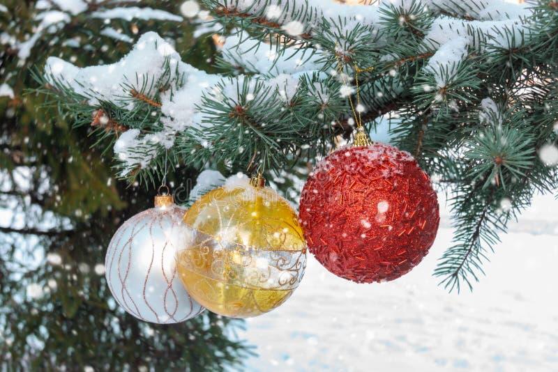 Colorful christmas balls hanging on tree branch stock photo