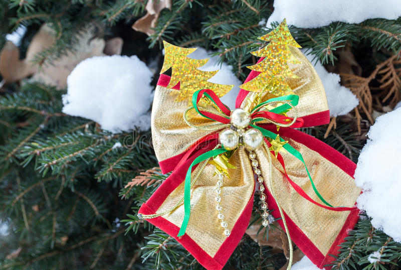 Colorful christmas ribbon on pine tree. Macro. Can be used as a whole background stock photography
