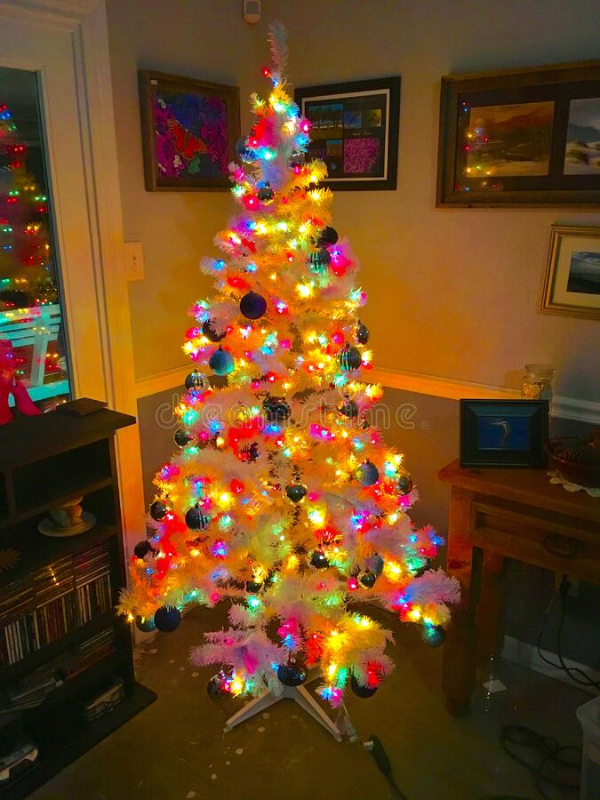 Colorful Christmas Tree Free Public Domain Cc0 Image