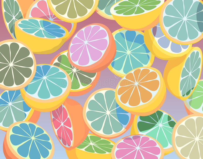 Colorful citrus fruit stock illustration