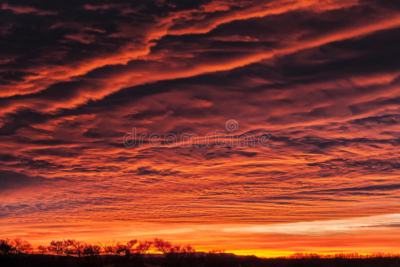 Colorful Clouds and Horizon. Dramatic orange red clouds covering the sky above a tree lined horizon stock photo