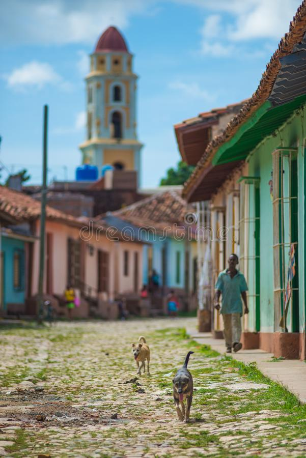 Colorful Colonial Caribbean historic town with beautiful cobblestone street and cute dog, Cuba, America. royalty free stock photography