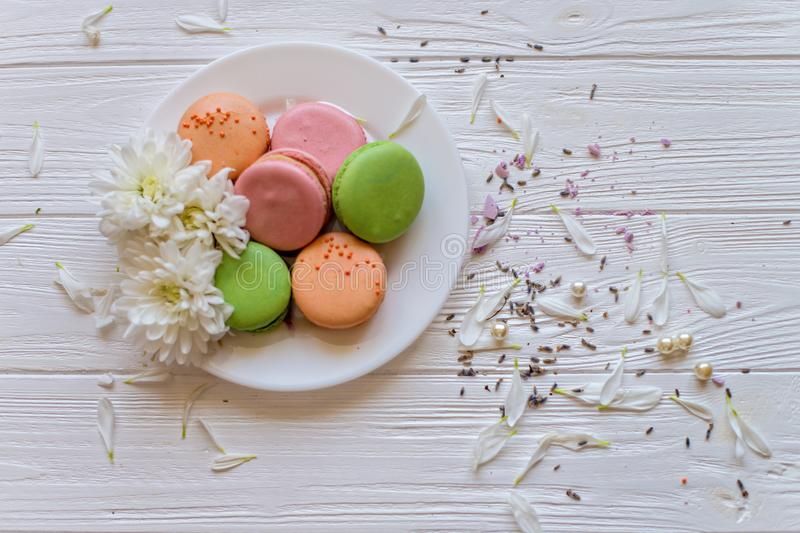 Colorful cookies macarons whith white flowers on the plate. White wood background. Flat lay royalty free stock photo