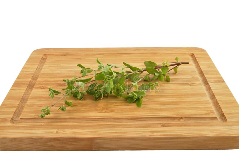 Marjoram on cutting board isolated stock photography
