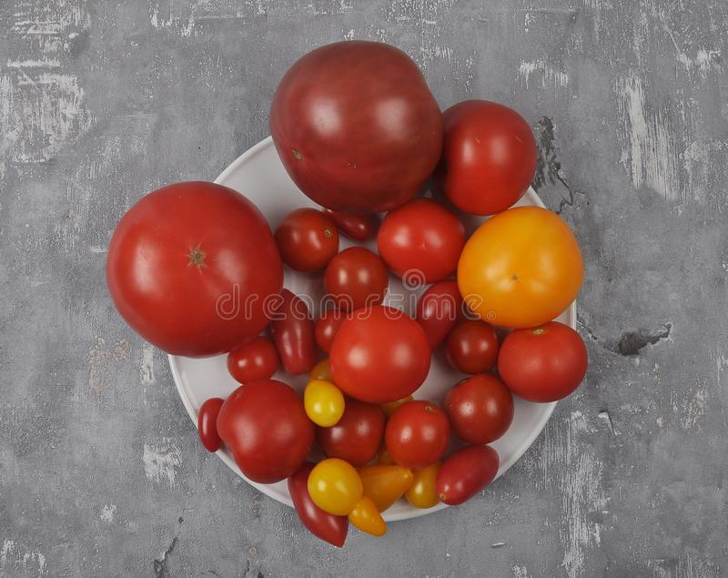 Variety of tomato cultivars on plate and concrete stock image