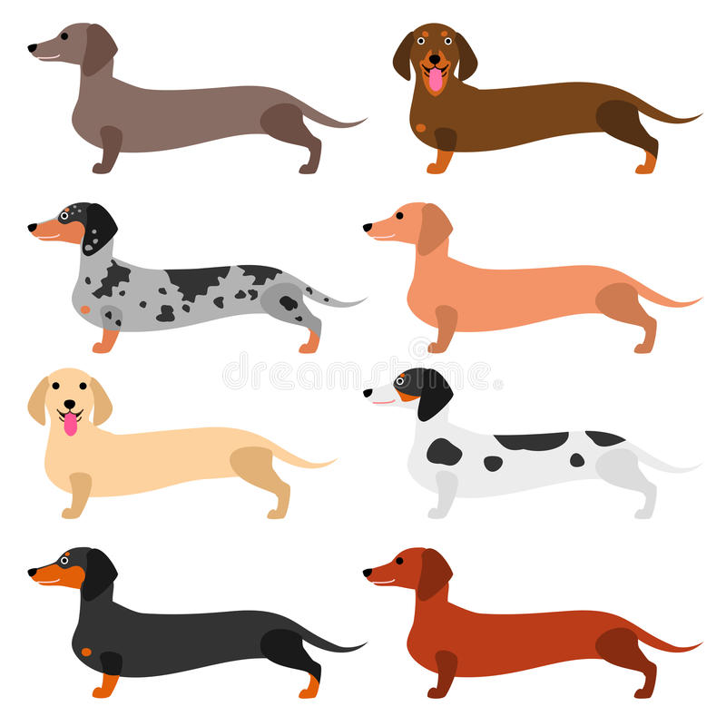 Free Colorful Dachshund Set Royalty Free Stock Photography - 96225717