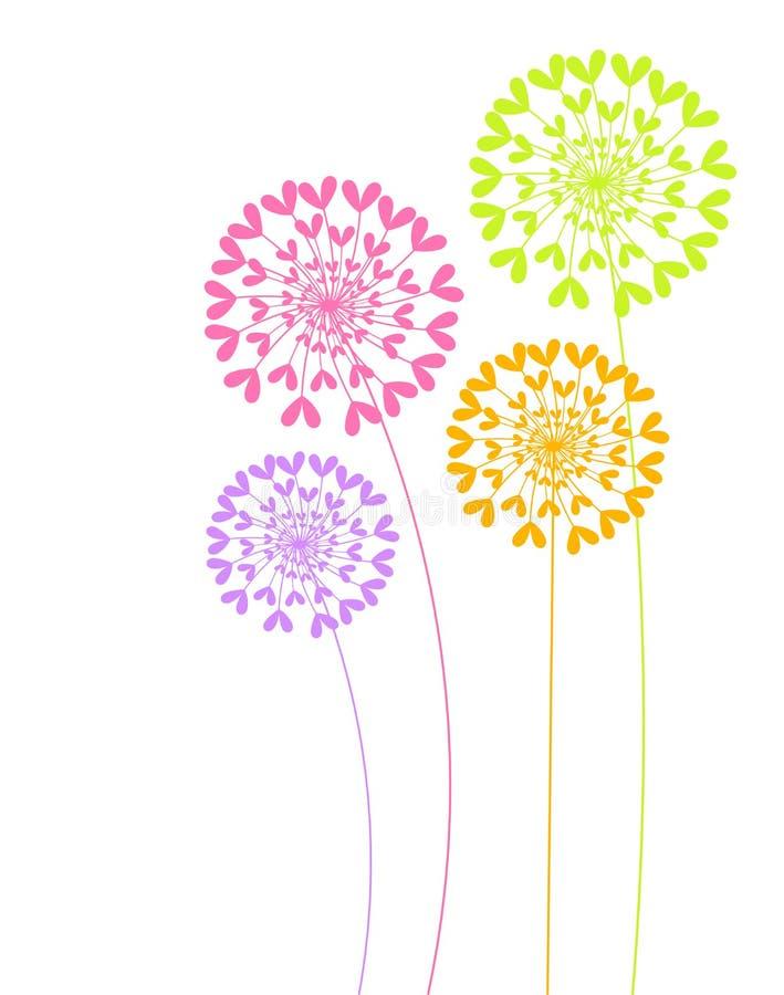 Colorful dandelion flowers vector illustration