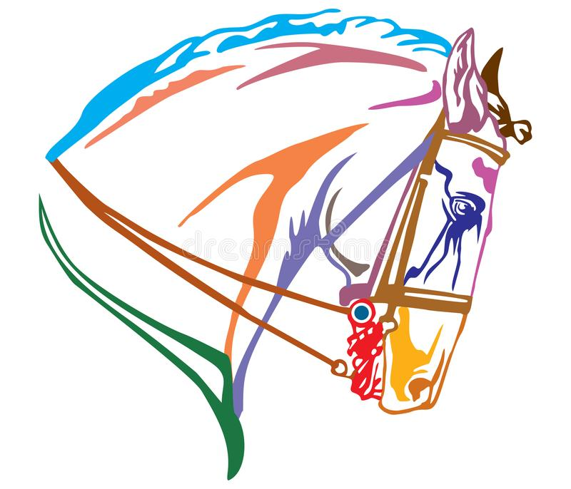 Colorful decorative portrait of Andalusian horse vector illustration stock illustration
