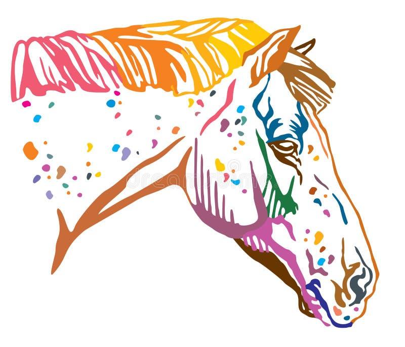 Colorful decorative portrait of Appaloosa horse vector illustration stock illustration