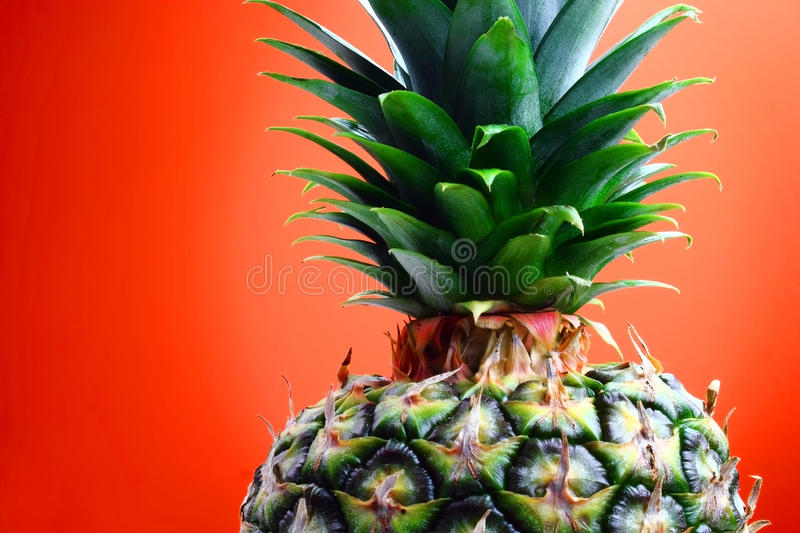 Colorful and delicious stock images