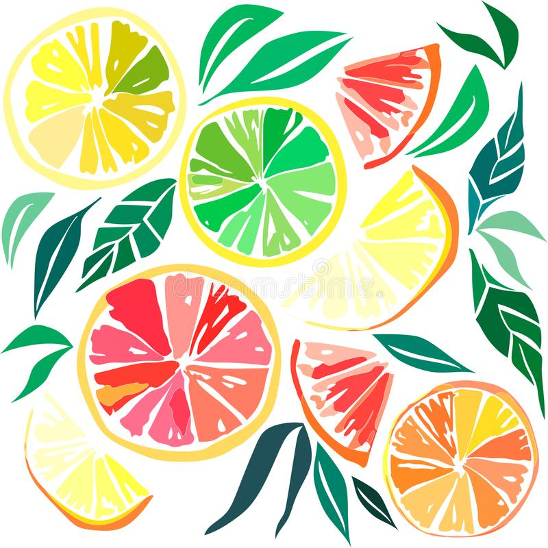 Colorful delicious tasty yummy ripe juicy lovely orange summer autumn dessert slices of oranges and mandarins pattern vector. Beautiful bright colorful delicious vector illustration