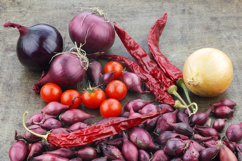 colorful display of onions,tomatoes and dried chili peppers on a grungy metal tray stock photography