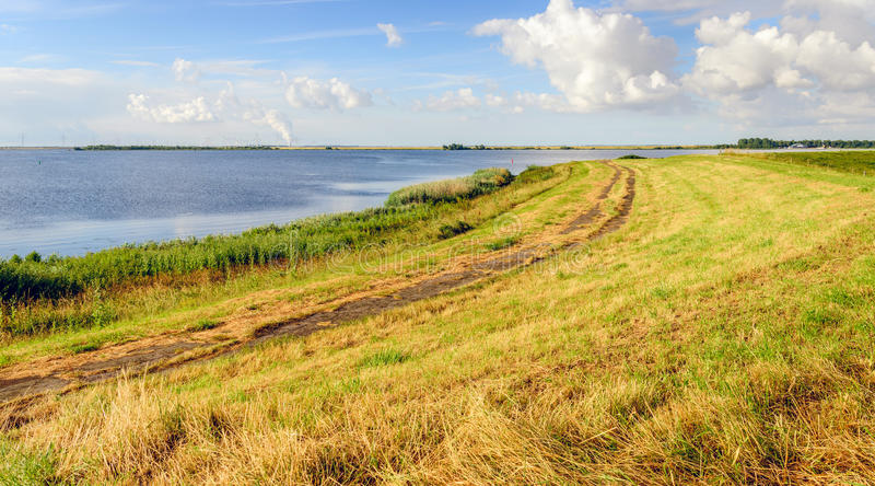 Colorful Dutch landscape in summertime royalty free stock images