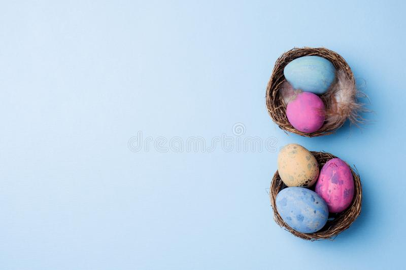 Colorful easter egg in the nest on blue background with copy space. Easter background. Minimalism stock photography
