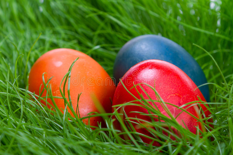 Download Colorful easter eggs stock image. Image of paint, celebrate - 23948333