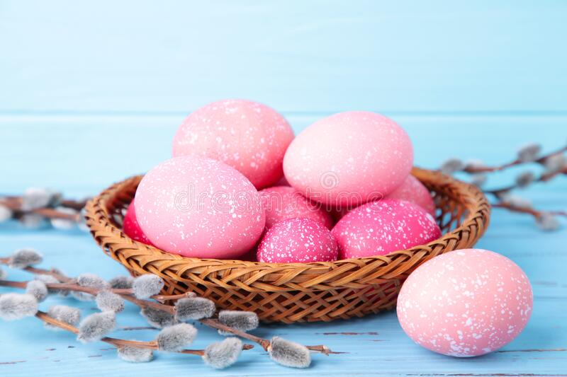 Pink easter eggs in basket and willow branches on blue background royalty free stock images