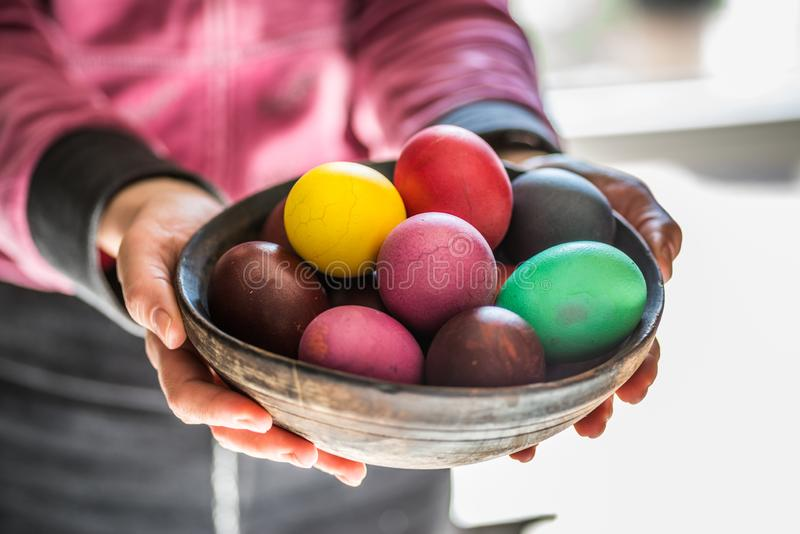 Colorful Easter eggs in bowl in woman`s hands.  royalty free stock images