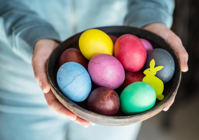 Colorful Easter eggs in bowl in woman`s hands.  royalty free stock image