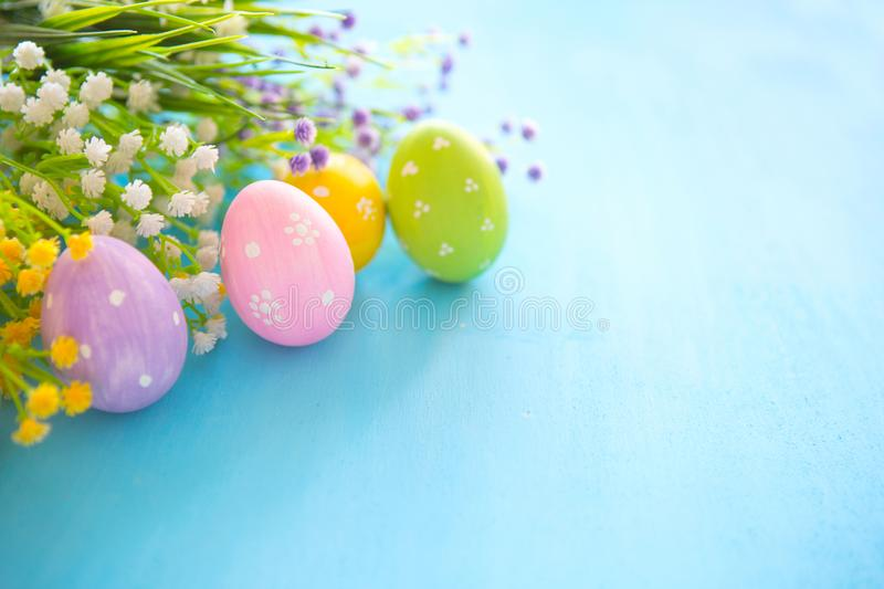 Colorful easter eggs and branch with flowers on blue wooden desk.  stock image