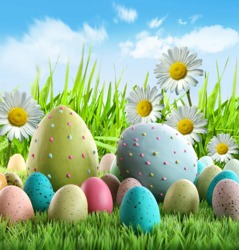 Colorful Easter eggs with daisies royalty free stock photography