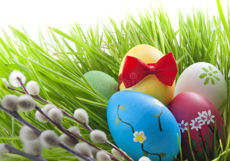 Colorful easter eggs in green grass stock images