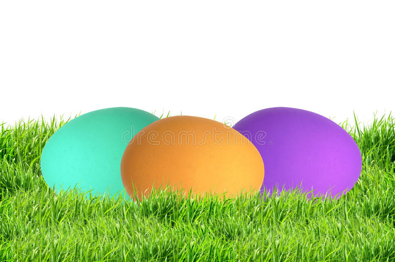 Colorful Easter Eggs in green grass isolated on white royalty free stock photos
