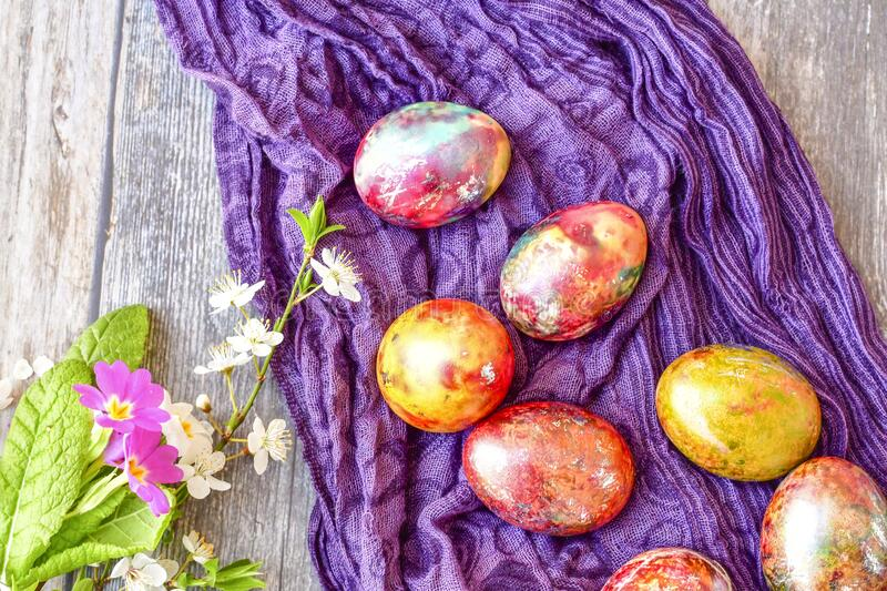 Colorful Easter eggs. Colorful easter hand painted eggs and spring blossom on wooden background royalty free stock photo