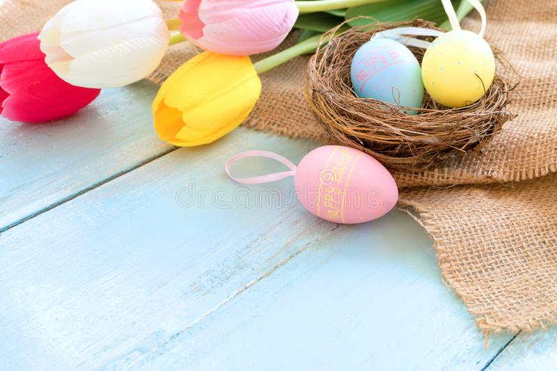 Colorful Easter eggs in nest with tulip flowers on blue wooden background. stock images