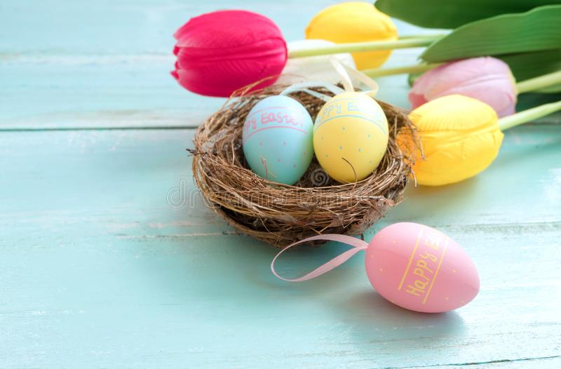 Colorful Easter eggs in nest with tulip flowers on blue wooden background. stock photography