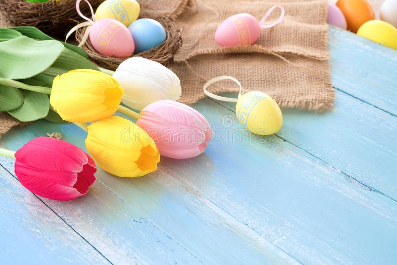Colorful Easter eggs in nest with tulip flowers on blue wooden background. royalty free stock photos