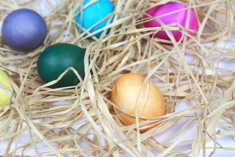 Colorful easter eggs in raffia nest on white background royalty free stock photo