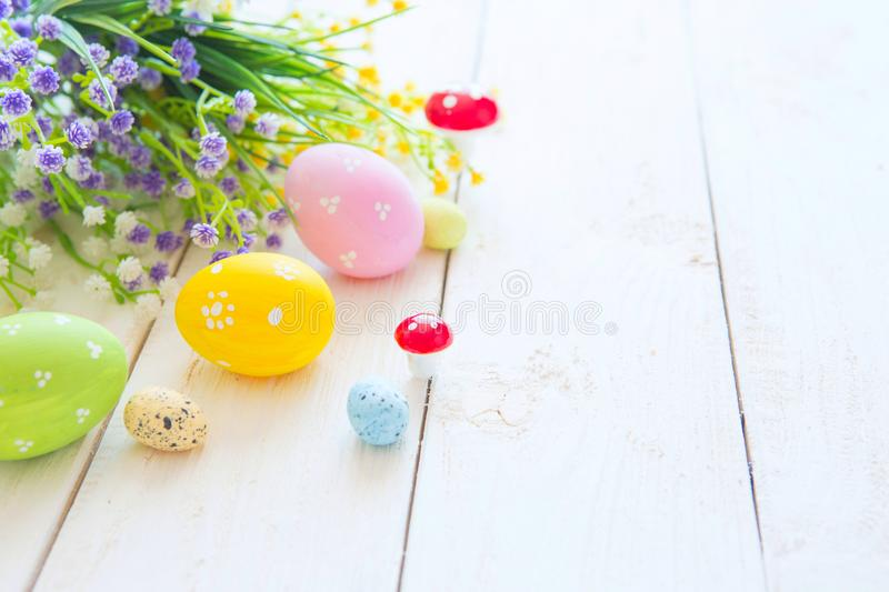 Colorful Easter eggs and spring flowers. On white wooden background royalty free stock image