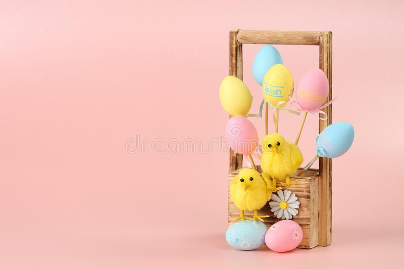 Colorful Easter eggs on sticks and two cute chickens in a wooden flowers basket against pink background. Happy Easter greeting royalty free stock image