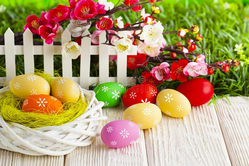 Colorful Easter eggs on white wooden table and flowers on grass royalty free stock photo